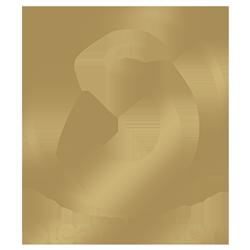 steamulation-logo-1080-2